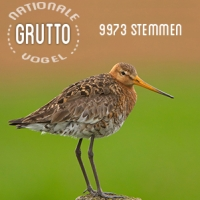 Gruttu: Nationale Vogel