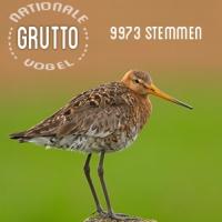 Gruttu: Nationale Vogel
